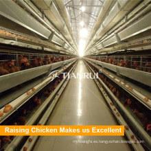 Jaula de batería de pollo automática de venta caliente en Bengala