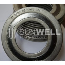 Special Materials Spiral Wound Gaskets of Hastelloy B3