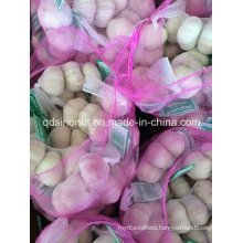 New Crop Fresh Normal White Garlic 3p/10kg Bag or Carton