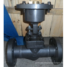 6.4MPa Dn50 A105 Forged Gate Valve