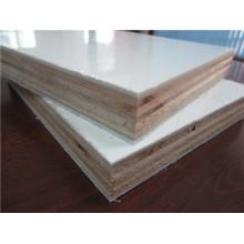 Paneles de sandwich de madera contrachapada FRP recubiertos de gel para carrocería de camión