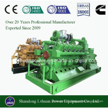 Ce ISO Approved Natural Gas Power Generator Power Plant LNG CNG