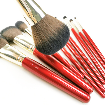 Collection de pinceaux de maquillage 10PC pour débutants