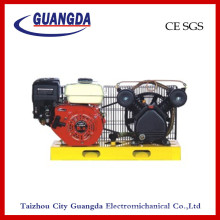 Compresseur d'air du panneau CE SGS 5.5HP (DCV2051)