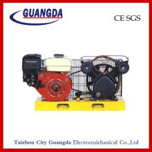 CE SGS 5.5HP Panel Air Compressor (DCV2051)