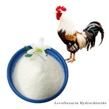 Buy online active Levofloxacin Hydrochloride powder