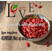 goji SCM offre --- l'entrepôt de la Turquie