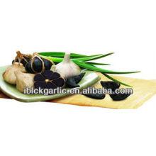 Prévention et guérison du cancer Aimant noir organique 2pcs / bag