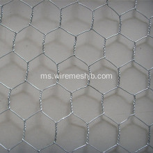 Galvanized Hexagonal Wire Netting untuk Membuat Covers