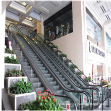 Cheap Price Cost Home Indoor Residential Escalator
