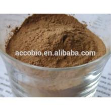 Flammulina Velutipes Extract Powder / golden needle mushroom, Polysaccharide10%-30% UV;10:1,20:1