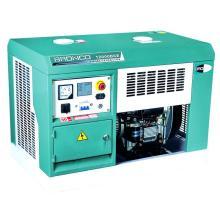 Портативный дизельный генератор (BN12000DCE)