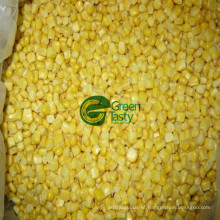 Hot Sell Non Gmo Canned Sweet Corn