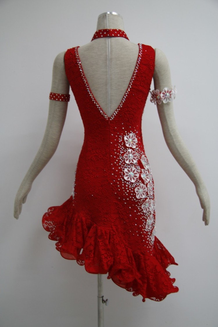 Fringe Latin Dance Dress