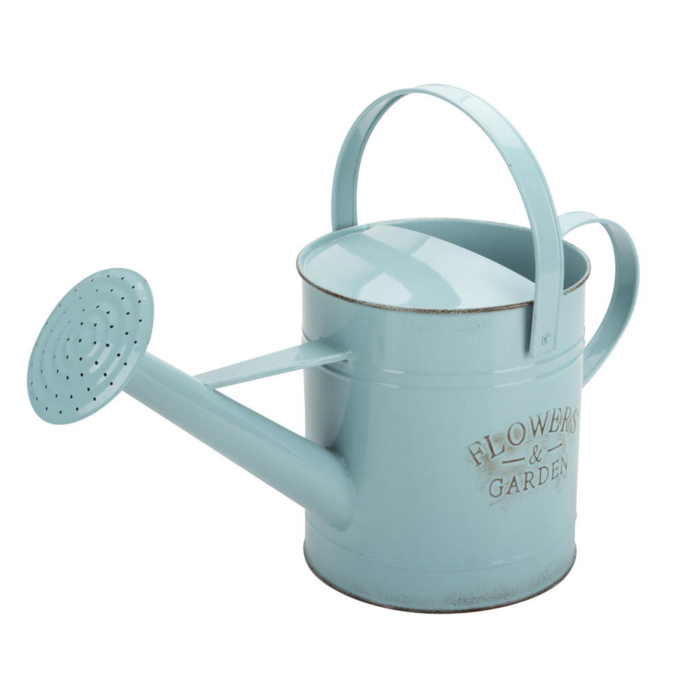 Walmart Watering Can