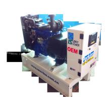 Ensemble générateur diesel New Line Perkins Série / Générateur / Généreuse