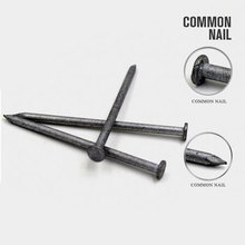 New Design Common Round Wire Nails with Nice Price