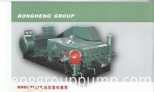 Reciprocating Plunger Pump