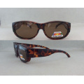 Óculos de Óculos de Óleo de Acetato de Qualidade Superior P072158