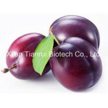 Plum Juice Powder/Plum Fruit Powder/Plum Extract Powder/Plum Juice Concentrate Powder