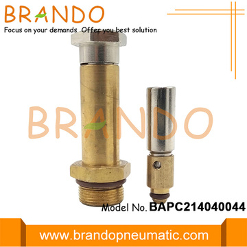 LPG CNG Regulator Brass Solenoid Stem Plunger
