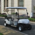 Best selling Electric Golf Cart 4 seat