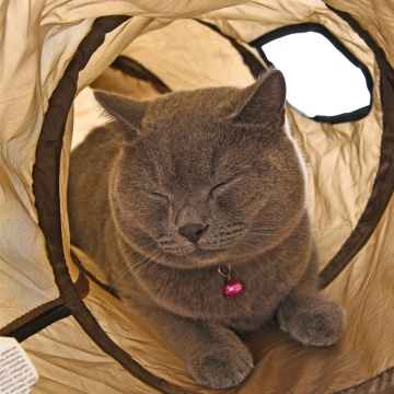 S Funny Pet Tunnel Cat Play Tunnel