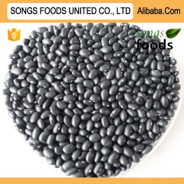 Frijoles negros chinos