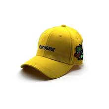 Custom Embroidery patches Cotton sport hat