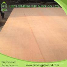 Poplar or Hardwood Core Dbbcc Grade 12mm Bintangor Plywood