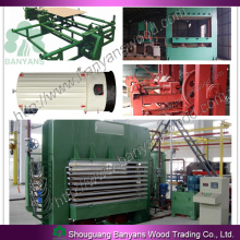 Plywood/Film Faced Plywood Production Line/Plywood and Film Faced Plywood Machine/Plywood Making Line