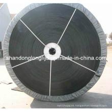Sistema transportador Falt Ruber China