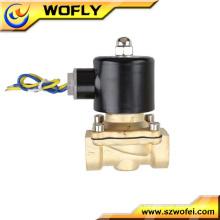 Válvula de solenóide de latão de 9v de temperatura normal de preço baixo de 2/2 normalmente fechada para fonte