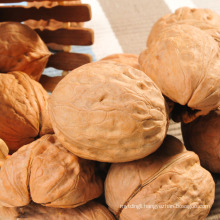 Chinese good quality walnuts inshell