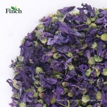 Finch New Arrival Health Herbal Tea Dry Violet Flower
