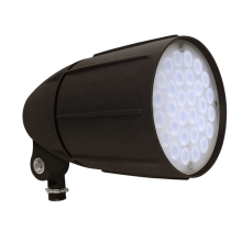 Design Outdoor 6W LED Spike Light