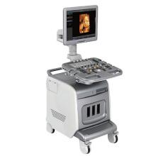 4D Color Doppler Ultrasound Machine PT400