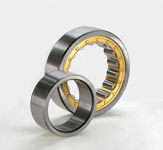 Cylindrical Roller Bearing 1044