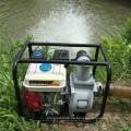 China Taizhou-Fabrik 2 Zoll Wp20 50mm Benzin-Bewässerungs-Maschinen-Wasser-Pumpe