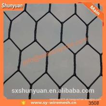 Proteção de PVC protegida Fence Netting