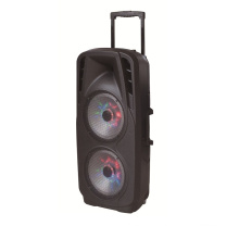 Double 10 Inch Battery Speaker in Professional Audio for DJ Stage F73D