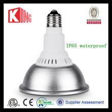 DC 12V Energy Saving R20 R30 Lamp Bulb