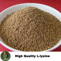 Alimentación Additve L Lysine Hydrochloride 98.5%