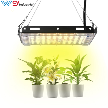 LED Grow Light For Plant 3500K Branco Quente