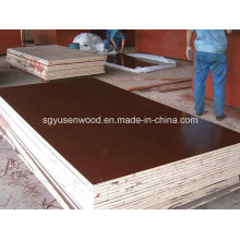 out Door First Class Film Faced Shuttering Plywood