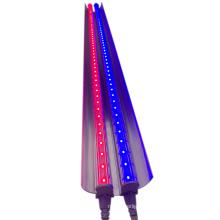SINOCO IP67 Vertical Farming full spectrum LED grow light in greenhouse for strawberry planting amber light blue light green LED