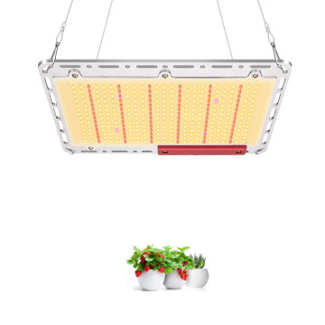 Planta de panel plano de 120w Quantum Led Grow Light