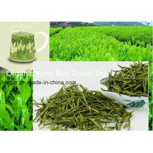 Свежий зеленый зеленый чай