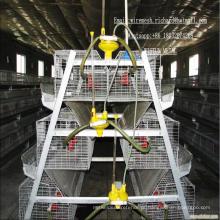 Gaiolas de frango gaiola de frango gaiolas de galinhas industriais henhouse da china