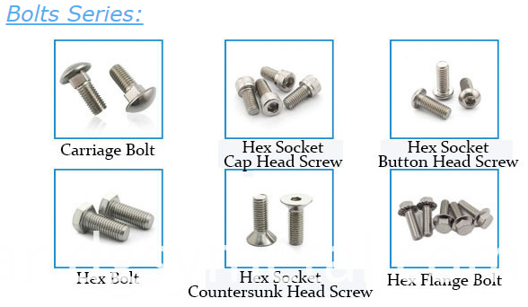 Stainless Steel Nails screws